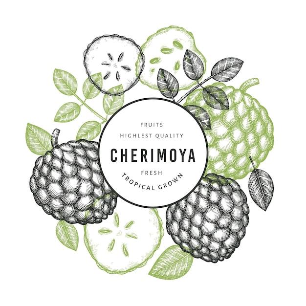 Ручной обращается эскиз в стиле черимойя баннер. иллюстрация органических свежих фруктов на белом фоне. гравированный ботанический шаблон стиля. Premium векторы