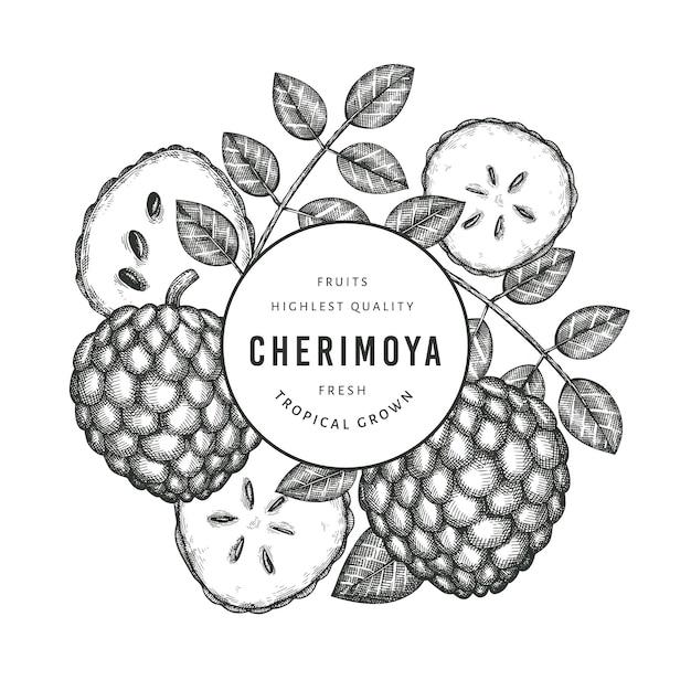 Ручной обращается эскиз стиля черимойя. иллюстрация органических свежих фруктов на белом фоне. гравированный ботанический шаблон стиля. Premium векторы