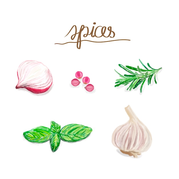 Hand drawn spice watercolor style Free Vector