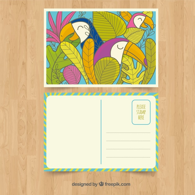 Hand drawn summer card template with tropical\ birds