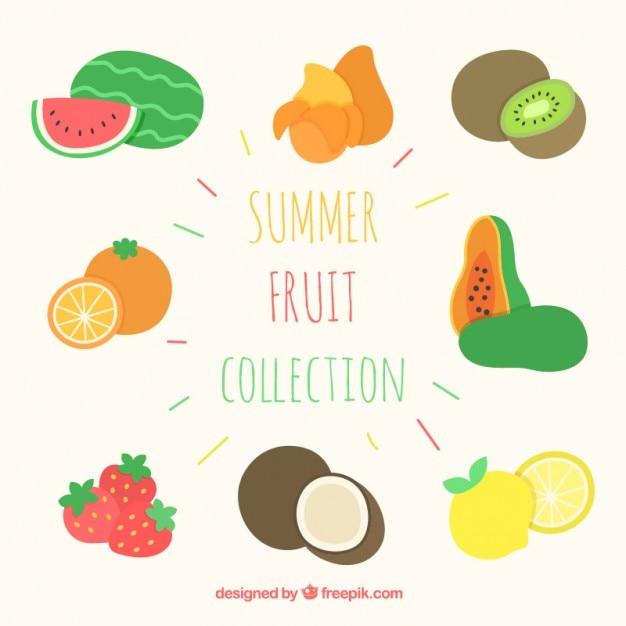 دست مجموعه میوه تابستان کشیده شده
