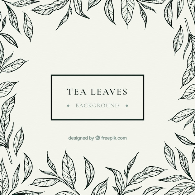 Hand drawn tea leaves background Premium Vector