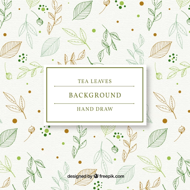 Hand drawn tea leaves background Free Vector