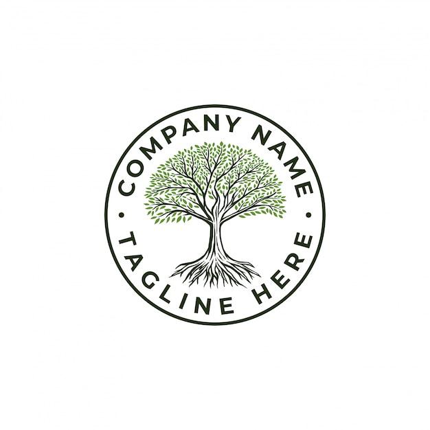 Hand drawn tree Premium Vector