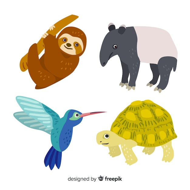 Hand drawn tropical animal collection Free Vector
