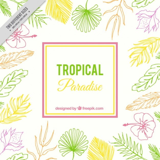 Hand drawn tropical background with exotic\ flowers