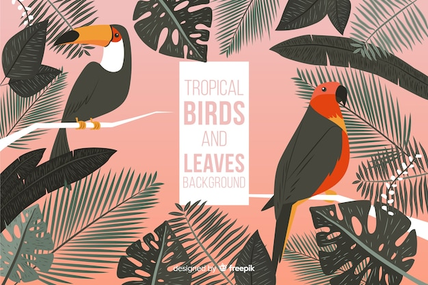 Hand drawn tropical birds and leaves background Free Vector