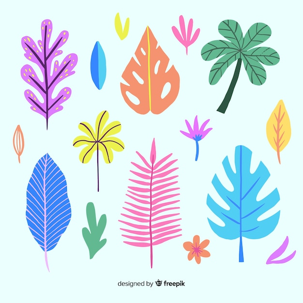 Hand drawn tropical colorful leaves collection Free Vector