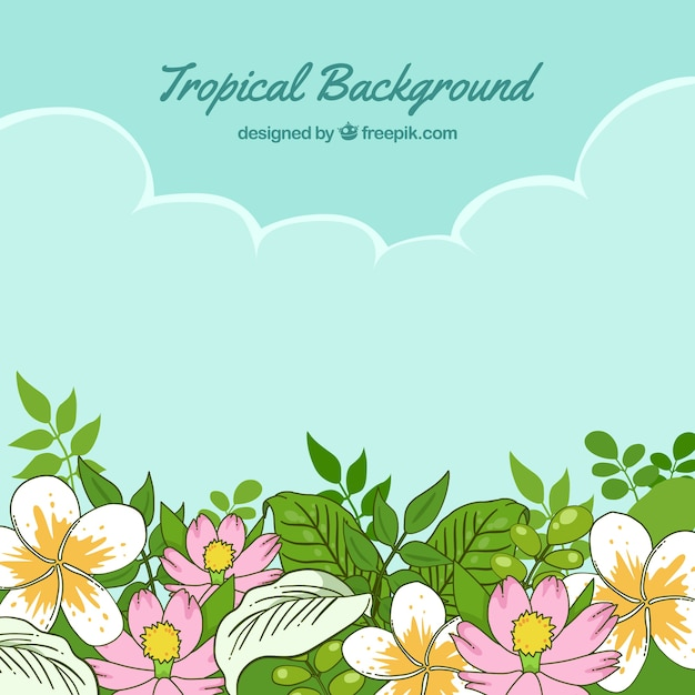 Hand drawn tropical flowers and blue sky\ background
