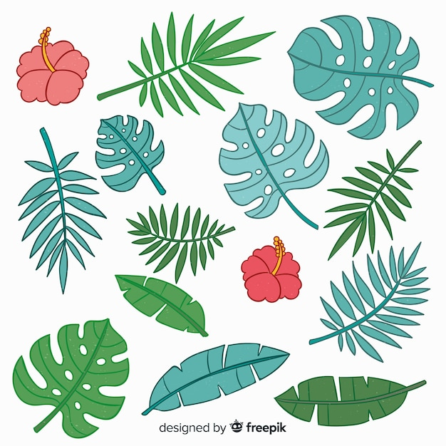 Hand drawn tropical flowers and leaves Free Vector