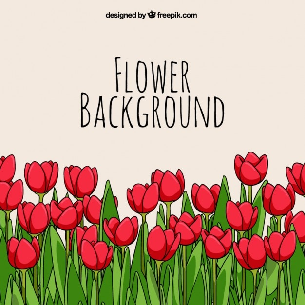 Hand drawn tulips background Free Vector