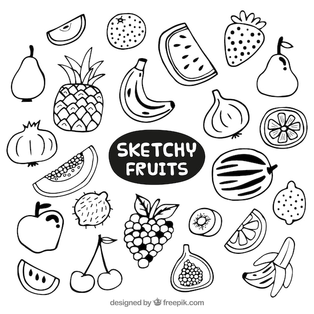 D Line Drawings Vegetables : Hand drawn variety of fruits vector premium download