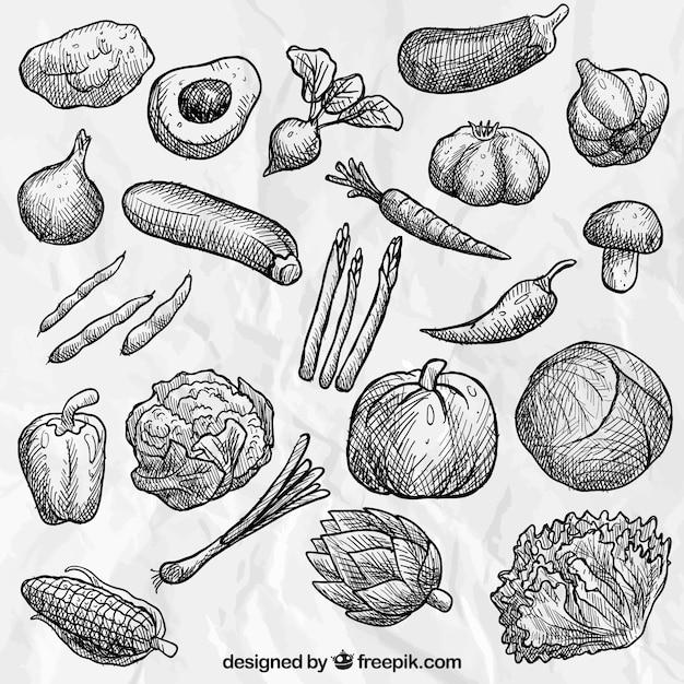 مجموعه دست کشیده سبزیجات