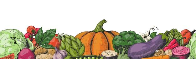 手描きの野菜。色の野菜フレームボーダーシームレスパターン。 Premiumベクター