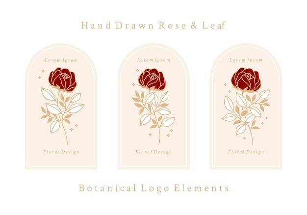 Нарисованный рукой винтажный шаблон логотипа цветка ботанической розы и коллекция элементов бренда женской красоты Premium векторы