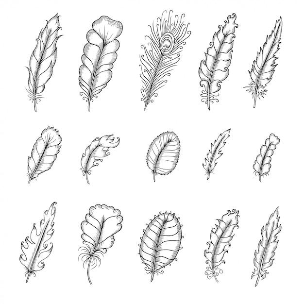 Набор рисованной старинные перья. ручка графическая векторная иллюстрация. Premium векторы