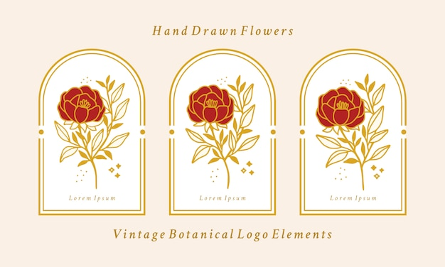 손으로 그린 빈티지 골드 식물 모란 꽃 로고 요소 컬렉션 프리미엄 벡터