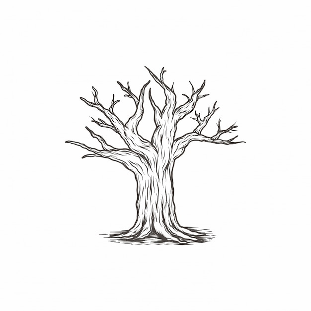 Hand drawn vintage tree branch Premium Vector