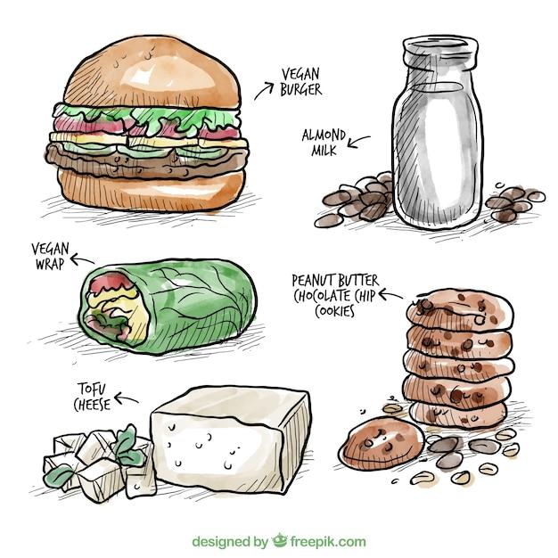 Hand drawn watercolor delicious vegan food Free Vector