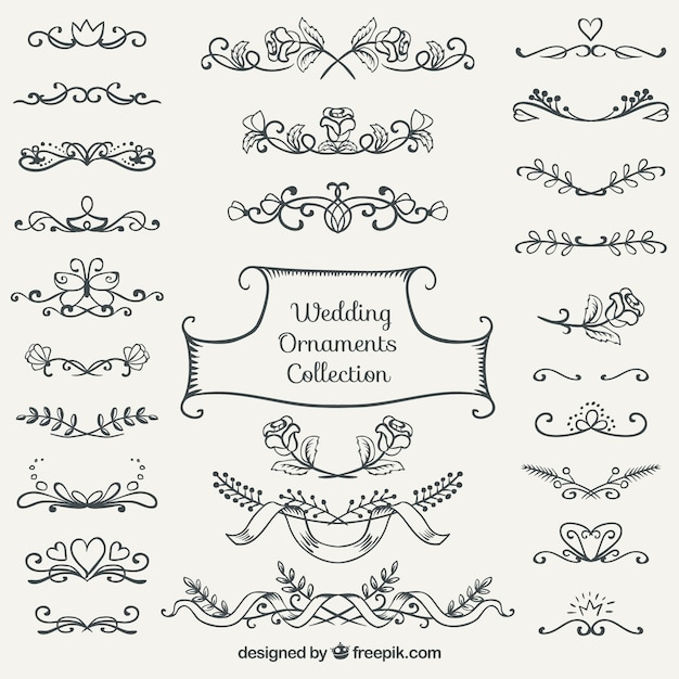 Hand drawn wedding ornament collection vector free download for Wedding ornaments