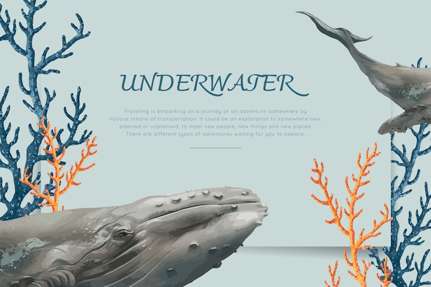 Hand drawn whale Free Vector