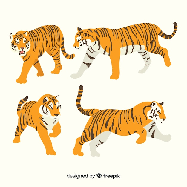 Коллекция рисованной дикого тигра Бесплатные векторы