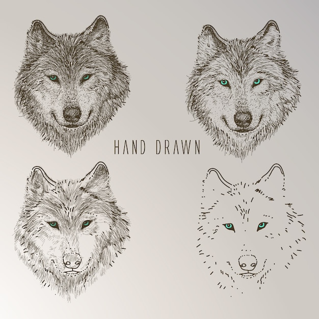 hand drawn wolf head collection free vector