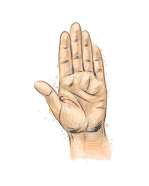 손 제스처, 수채화 스플래시에서 중지 제스처를 만드는 손으로 그린 된 스케치. 그림 물감 프리미엄 벡터