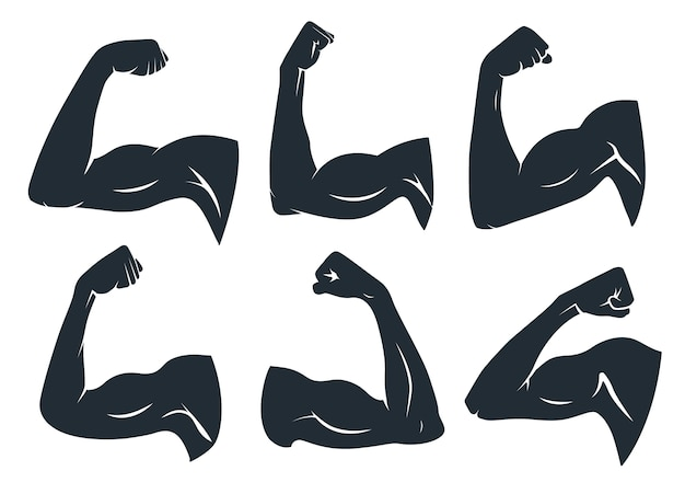 Hand muscle silhouette. strong arm muscles, hard biceps and power gym. armpits muscle fitness logo, body builder guy bicep or strength arms powers badge. isolated vector stencil icons set Premium Vector