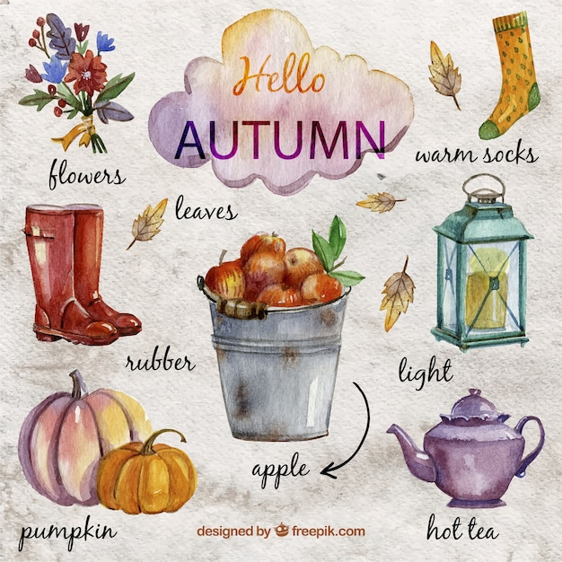 Hand painted autumnal elements Free Vector