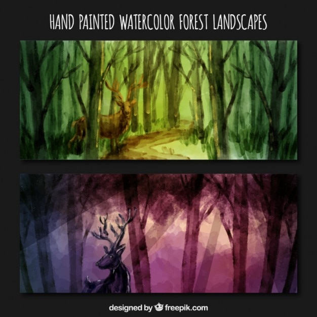 Hand painted beautiful forest with a dell banners