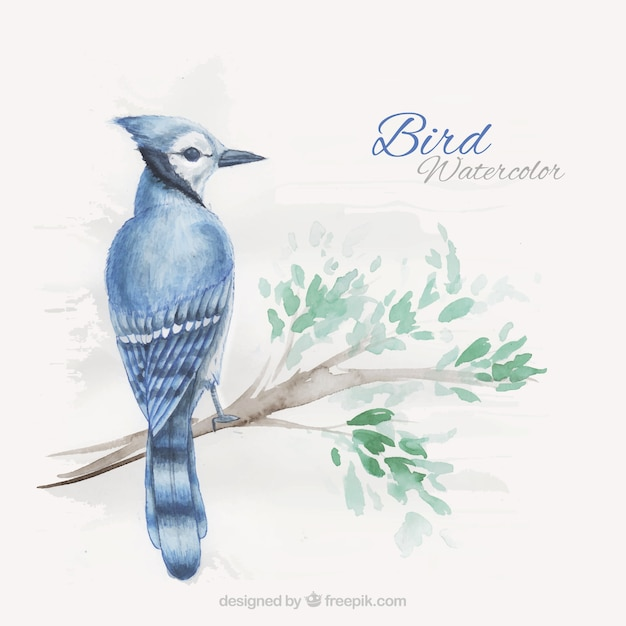 Hand painted exotic bird on a branch\ background