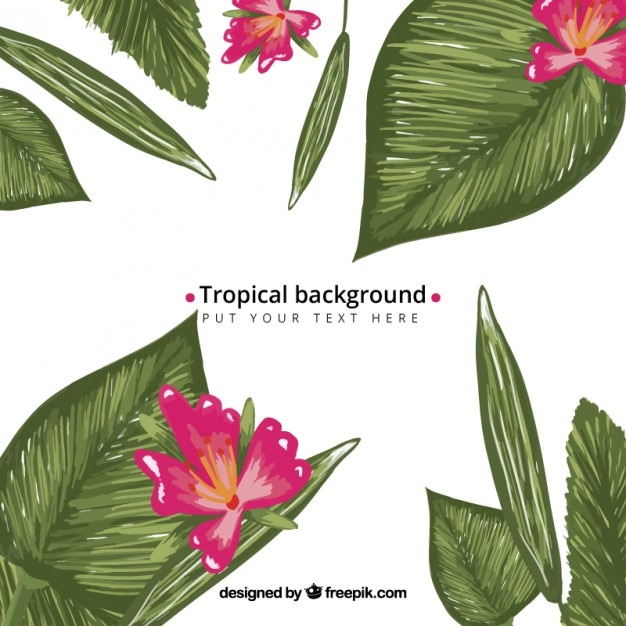 Hand painted exotic flowers with green leaves\ background