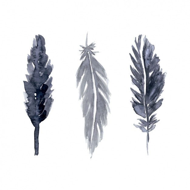 Hand painted feathers set Free Vector
