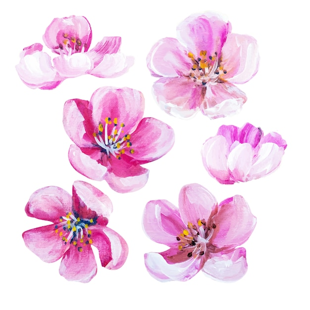 watercolor vectors, photos and psd files  free download, Beautiful flower