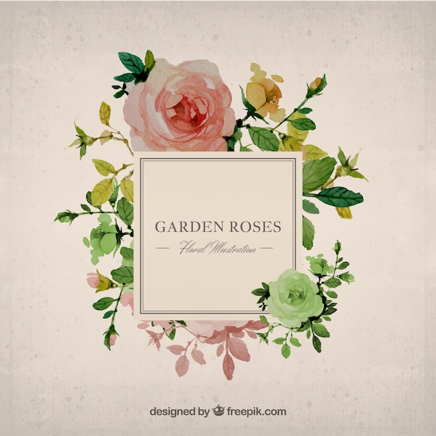 Hand Painted Garden Roses Background Vector Free Download