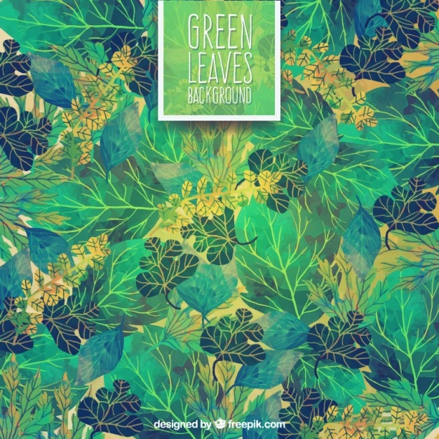 Hand painted green leaves background Premium Vector