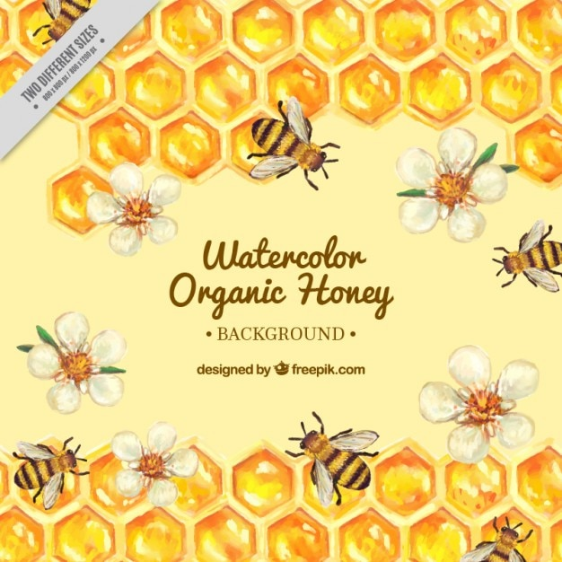 Hand painted hive with flowers and bees background  Free Vector
