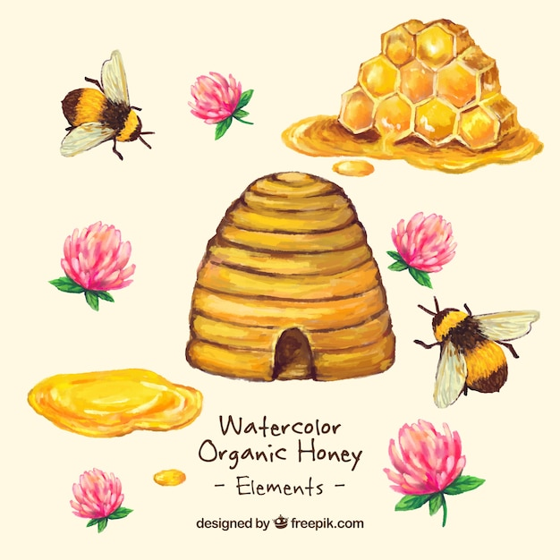 Hand painted honey organic honey with flowers Free Vector