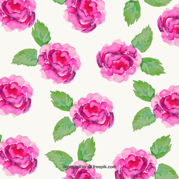 Hand painted pink flowers Free Vector