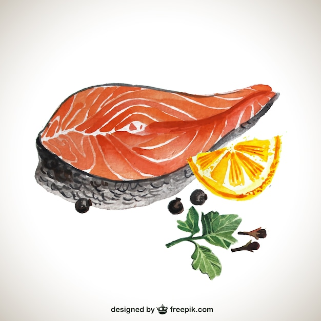 hand painted salmon steak vector free download