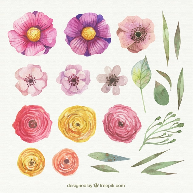 Hand painted spring flowers Free Vector