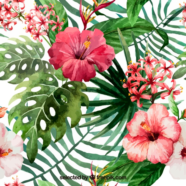 Hand Painted Tropical Flowers Vector Free Download