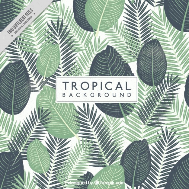 Hand Painted Tropical Leaves Background Vector Free Download Enchanting Tropical Leaves Pattern