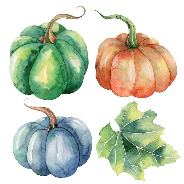 Hand painted watercolor autumn clip art with pumpkins Premium Vector