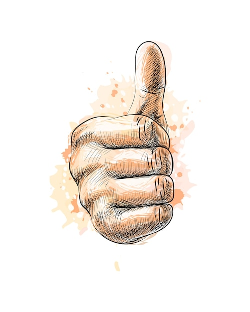 Hand showing symbol like. making thumb up gesture from a splash of watercolor, hand drawn sketch.  illustration of paints Premium Vector