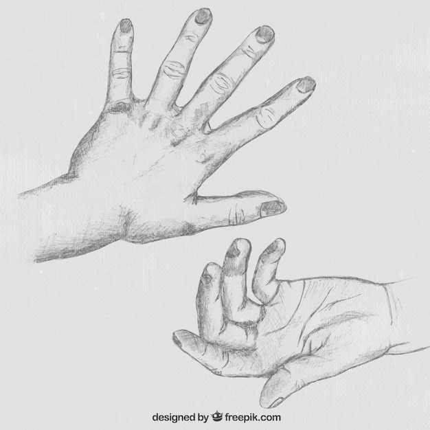 Hand sketch vector free download for Sketch online free