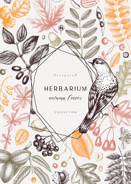 Hand sketched autumn card  in color. elegant botanical template with autumn leaves, berries, seeds and bird sketches. perfect for invitation, cards, flyers, menu, label, packaging. Premium Vector