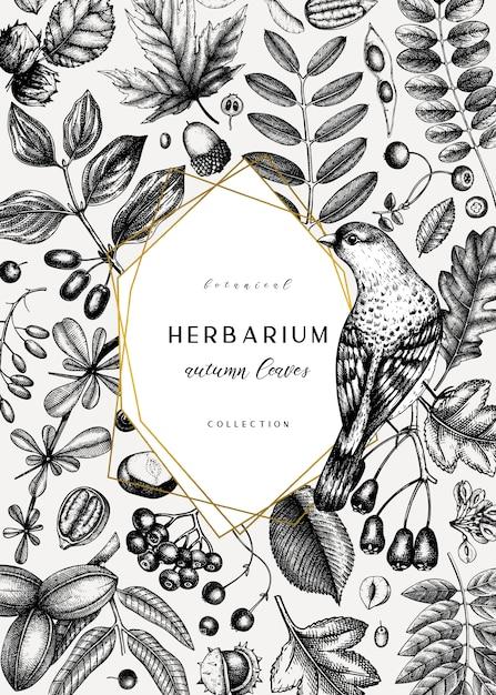 Рука нарисовала осеннюю карту. элегантный ботанический шаблон с осенними листьями, ягодами, семенами и эскизами птиц. идеально подходит для приглашения, поздравительных открыток, листовок, меню, этикеток, упаковки. Premium векторы