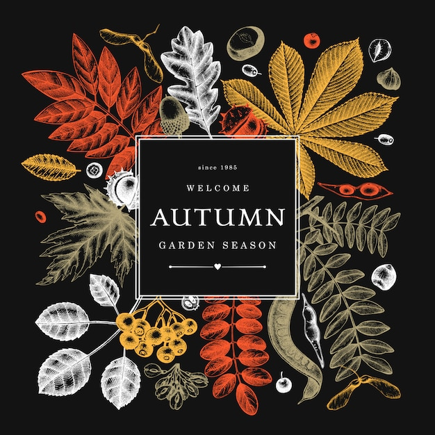 Hand sketched autumn leaves  in color on chalkboard. elegant botanical template with autumn leaves, berries, seeds sketches. perfect for invitation, cards, flyers, menu, label, packaging. Premium Vector